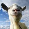 Coffee Stain Studios - Goat Simulator  artwork